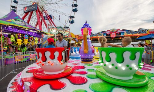 Tea Cups at the Pier